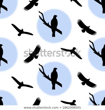 Zwart wit vogels witte naadloos vogel Stockfoto © shawlinmohd