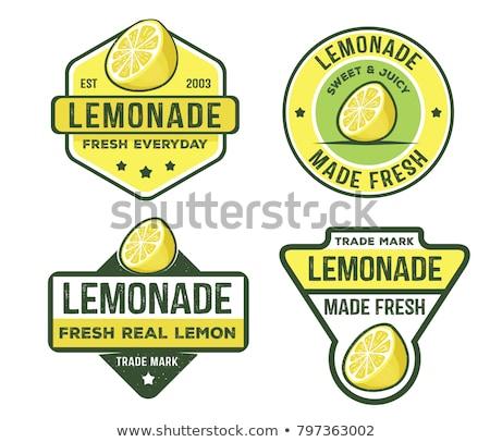 Vetor limonada logotipo modelo projeto limões Foto stock © blumer1979