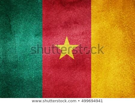 Камерун Гранж флаг старые Vintage гранж текстур Сток-фото © HypnoCreative