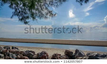 Island and trees and aum Stock photo © mariephoto