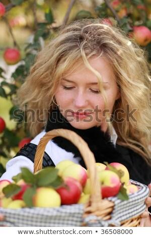 kobieta · owoców · szczęśliwy · portret · warzyw · koszyka - zdjęcia stock © photography33