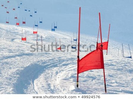 Ski downhill course Stock photo © Photoline