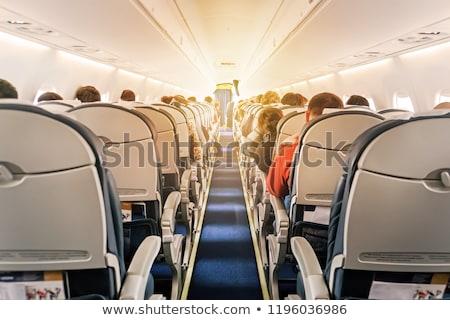 Havayolu iç görmek uçak tatil Stok fotoğraf © timwege