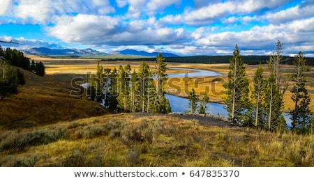 yellowstone river Stock photo © pedrosala