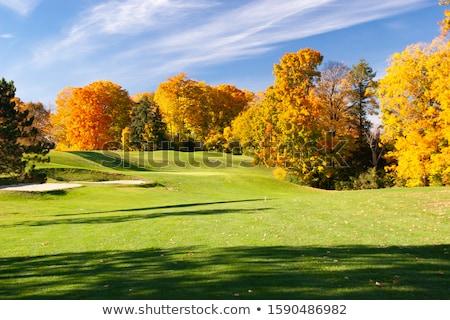 秋 ゴルフコース 空っぽ ゴルフ フィールド 緑 ストックフォト © CaptureLight