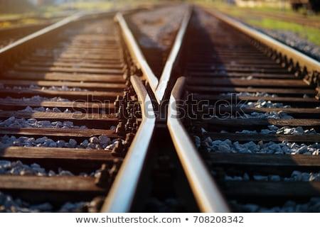 escolha · confusão · estratégia · caminho · negócio · vida - foto stock © stevanovicigor