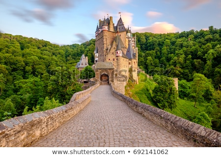 Medieval castle on the hill Stock photo © Rybakov