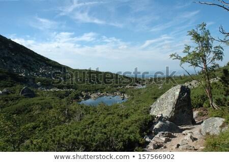 Montagnes Pologne République tchèque nature paysage Photo stock © janhetman
