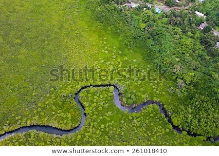 Stock fotó: Légi · tájkép · kilátás · folyó · fő- · Németország