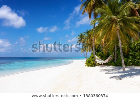 beautiful beach with fine white sand and trees and blue sea in r Stock photo © meinzahn