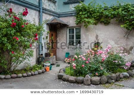 Casa quintal ver coberto varanda Foto stock © iriana88w