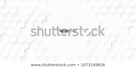 Abstract white hexagon background - vector illustration Stock photo © sdmix