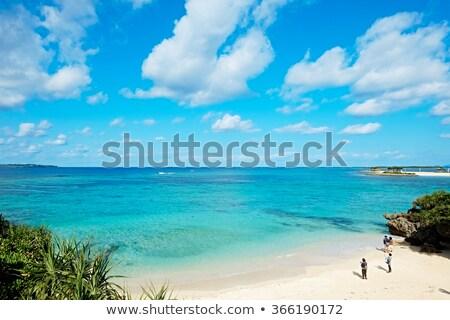 Okinawa beach water background texture Stock photo © shihina