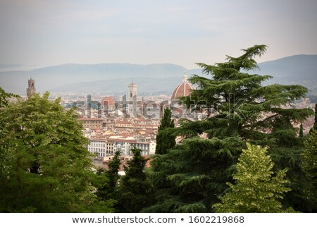Florence city view Stock photo © Dermot68