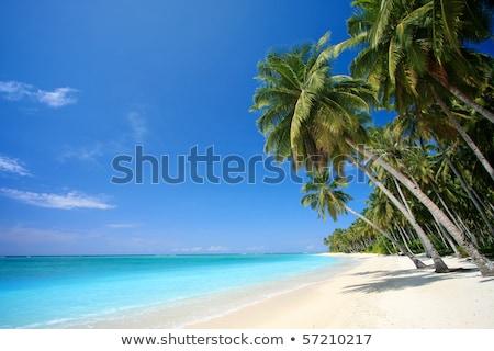 Friedlich Strand Bahamas Kristall Wasser bewölkt Stock foto © epstock