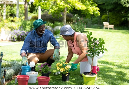 Stock photo: Mature Couple Planting Out Plants In Garden
