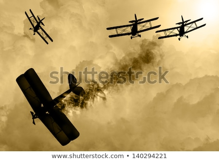 war with flies Stock photo © adrenalina