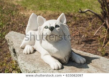 Ogar wiosną ogród szczeniak smutne zwierząt Zdjęcia stock © CaptureLight