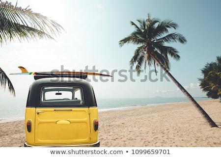 Régi autó szörfdeszka fehér nyár felirat hullám Stock fotó © doomko