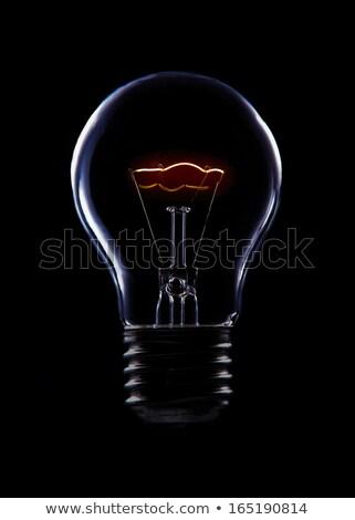 Filament closeup of the lightbulb. Stock photo © pashabo