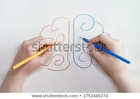 Mãos escrita lápis vetor coleção isolado Foto stock © Sonya_illustrations