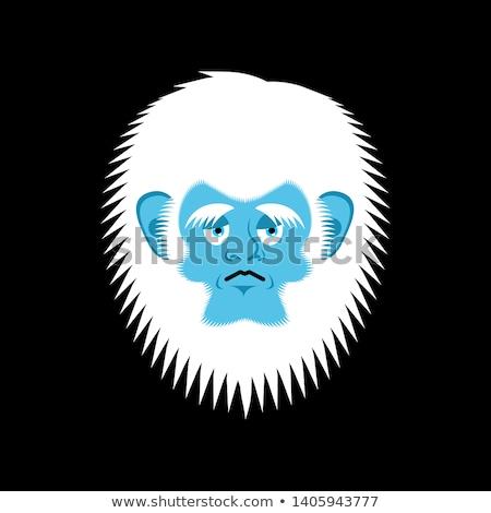 üzücü kardan adam melankoli avatar duygu yüz Stok fotoğraf © popaukropa