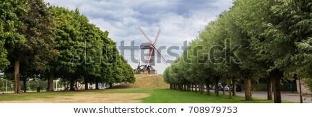 panorâmico · ver · vento · céu · grama · natureza - foto stock © artjazz
