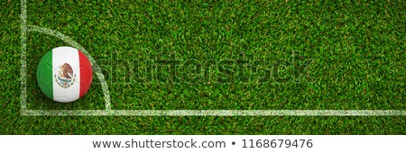 Zdjęcia stock: Football In Mexico Colours Against Green Grass