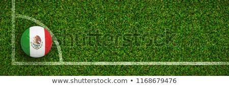 зеленая · трава · баннер · весны · трава · пшеницы · белый - Сток-фото © wavebreak_media