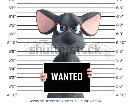Desenho animado zangado ladrão mouse olhando máscara Foto stock © cthoman