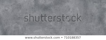 gray plaster background Stock photo © romvo