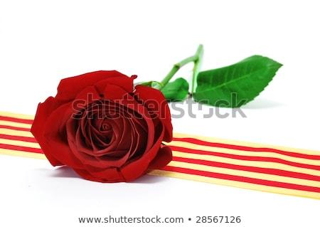 kırmızı · gül · bayrak · eski · kitap · rustik · ahşap · masa · ad - stok fotoğraf © nito