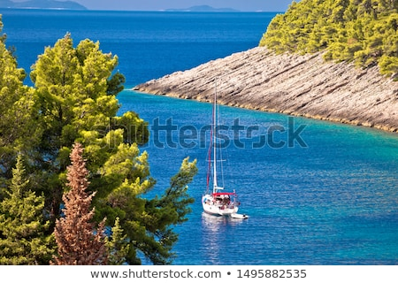 island of korcula hidden turquoise sailing bay in pupnatska luka stock photo © xbrchx