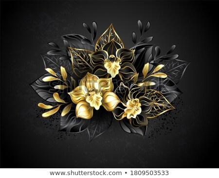 Three jewelry orchids Stock photo © blackmoon979