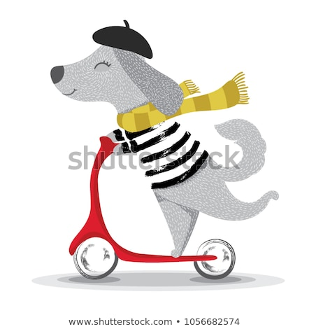 Happy terrier on a bicycle. Cute postcard with dog on a bike. Stock photo © vasilixa