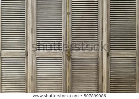 Garderobe deuren klassiek stijl meubels ontwerp Stockfoto © Anneleven