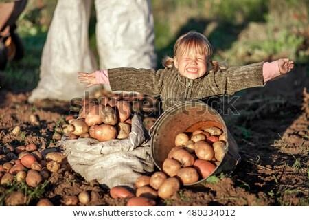 Lány felfelé krumpli fiatal női mosolyog Stock fotó © photography33