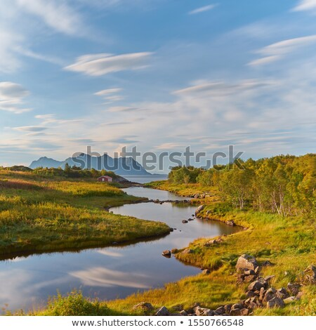 A river flows toward a Fjord in Norway Stock photo © 3523studio
