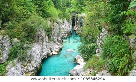 Zümrüt renkli alpine nehir Slovenya bahar Stok fotoğraf © Fesus