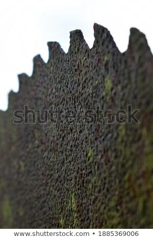 ржавые · древесины · Cut · металл · увидела - Сток-фото © sumners