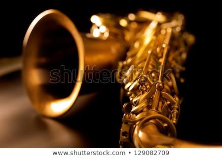 Tenor sax golden saxophone macro selective focus Stock photo © lunamarina