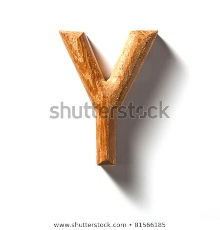 wooden alphabet - letter Y Stock photo © ozaiachin