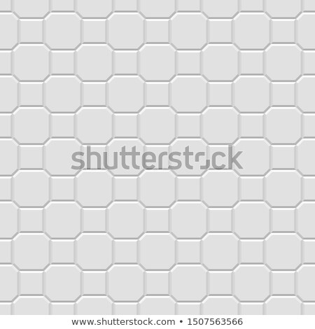Gray Square and Octagon Paving Slabs. Stock photo © tashatuvango
