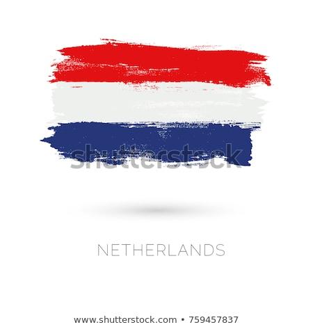 grunge · Hollandia · zászló · stílus · fehér - stock fotó © olgaaltunina