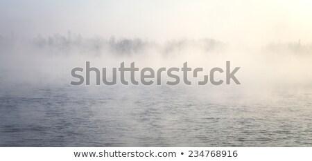 Stockfoto: Meer · eiland · mist · hemel · water · boom