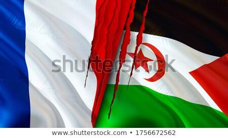 Franciaország western Szahara zászlók puzzle izolált Stock fotó © Istanbul2009