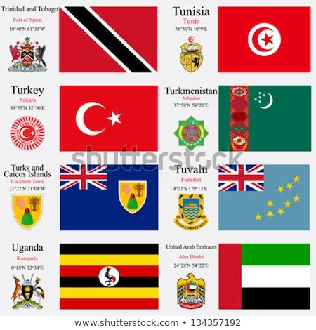 Объединенные Арабские Эмираты Тувалу флагами головоломки изолированный белый Сток-фото © Istanbul2009