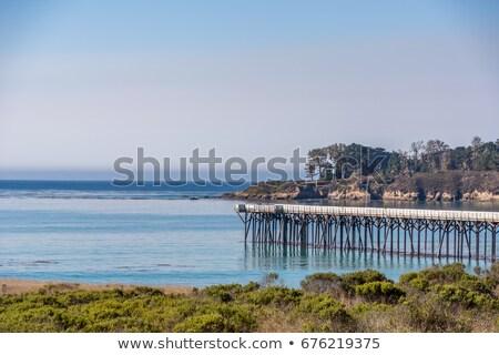 Spiaggia pier cielo blu Ocean Foto d'archivio © meinzahn