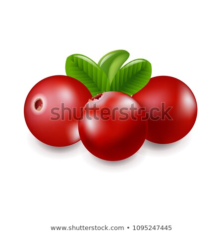 granberry with white background stock photo © adamson