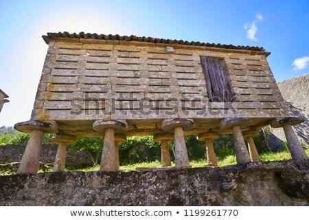 Galicië Spanje natuur zomer oceaan Blauw Stockfoto © lunamarina